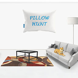 Pillow Hunt Game